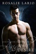 Angel's Desire: a Paranormal Romance Novel
