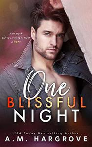One Blissful Night: A Stand Alone, Second Chance, Enemies To Lovers Romance