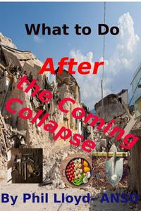 What to Do After the Coming Collapse