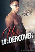 Hero Undercover: 25 Breathtaking Bad Boys