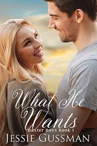 What He Wants (Baxter Boys Book 1) A Sweet, Second Chance Romance