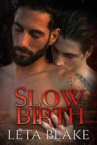 Slow Birth: a Heat of Love novella