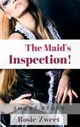 The Maid's Inspection