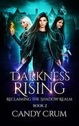 Darkness Rising: A Shadow Realm novel