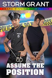 Assume the Position: a contemporary gay romance