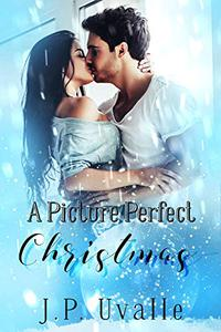 A Picture Perfect Christmas : A Christmas Romance Short