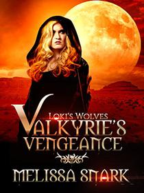 Valkyrie's Vengeance: Book 1