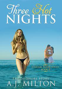 Three Hot Nights: A new adult romance