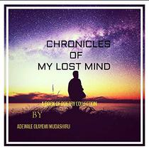 Chronicles Of My Lost Mind