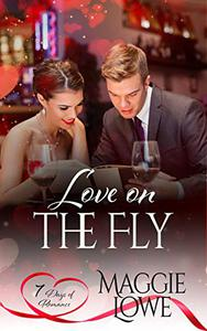 Love on the Fly: Short Stories