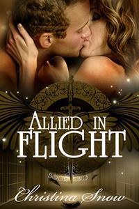 Allied in Flight