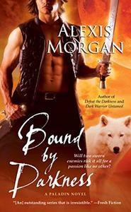 Bound by Darkness: A Paladin Novel