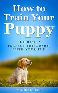 How To Train Your Puppy: Building A Perfect Friendship With Your Pup