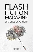 Flash Fiction Magazine - Book 3