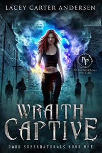 Wraith Captive: A Standalone Paranormal Reverse Harem