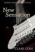 New Sensation: A Rockstar Romance
