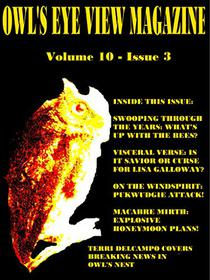 Owl's Eye View Magazine  Volume 10 - Issue 3