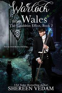 Warlock from Wales: The Cauldron Effect, Book 2