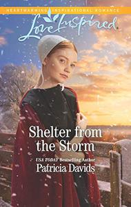 Shelter from the Storm: A Fresh-Start Family Romance