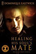 Healing His Soul's Mate