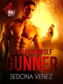 Operation Wolf: Gunner