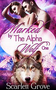 Marked By The Alpha Wolf: Book One