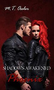 Shadow's Awakened Phoenix
