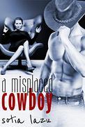 A Misplaced Cowboy