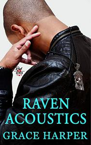 Raven Acoustics: Rock Star Romance