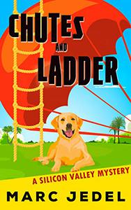 Chutes and Ladder: A Silicon Valley Mystery