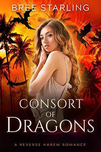 Consort of Dragons: A Reverse Harem Standalone Dragon Shifter Romance