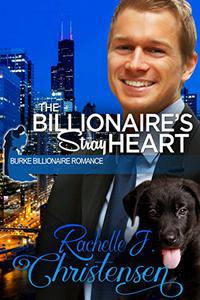 The Billionaire's Stray Heart