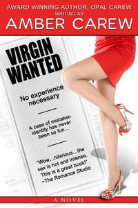 Virgin Wanted