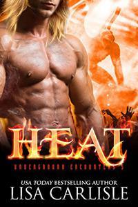 HEAT (a gargoyle shifter romance)