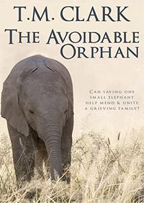 The Avoidable Orphan: a Child of Africa Story