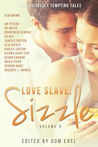 Love Slave: Sizzle