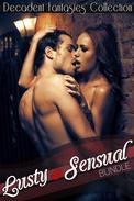 Lusty & Sensual Bundle (Motorcycle Club, Menage)