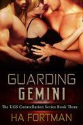 Guarding Gemini