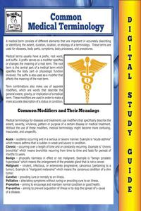 Common Medical Terminology ( Blokehead Easy Study Guide)