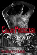 Cajun Protection (Wild Bounty Book 1)