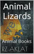 Animal - Lizards