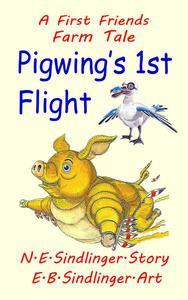 Pigwing's 1st Flight