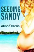 Seeding Sandy