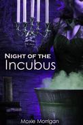 Night of the Incubus