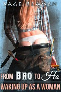 From Bro to Ho - A Gender Swap Story