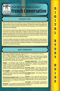 French Conversation ( Blokehead Easy Study Guide)
