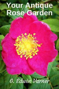 Your Antique Rose Garden