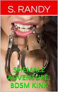 Shemale Adventure: BDSM Kink