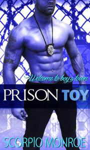Prison Toy