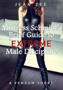Mistress Schmidt's Brief Guide to Extreme Male Discipline